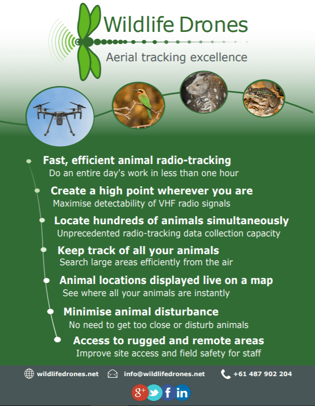 Wildlife Drones Flyer